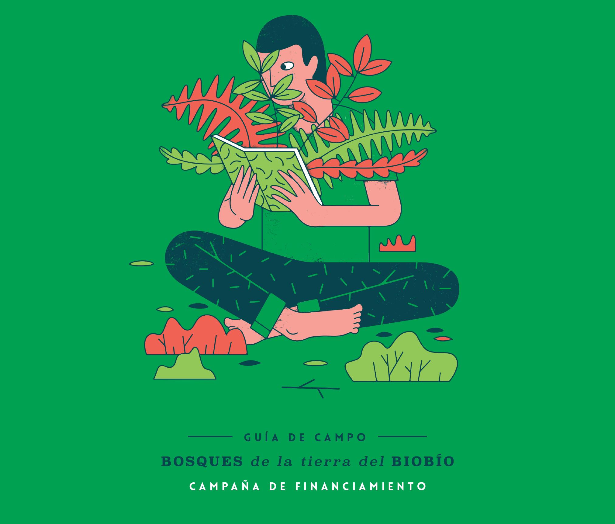 Campaña de financiamiento Guía de Campo Bosques de la tierra del Biobío